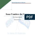 Sous-l-ombre-du-Coran.pdf