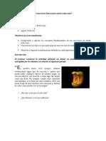 guia profesor reacciones oxido-reducci+¦n