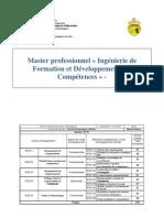 plan_master_ifidc.pdf