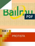 BAB 4 PROTISTA.ppt