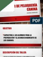TALLER DE PELUQUERÍA CANINA.pptx