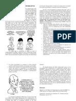 El debate sobre los flujos informativos.docx