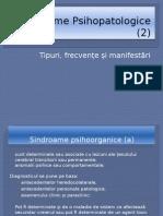 Sindroame-Psihopatologice-2