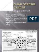Staging and Grading Cancer