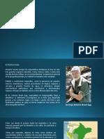 diapositiva de las ecorregiones.pptx
