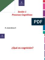 sesion 1 Procesos Cognitivos.pptx