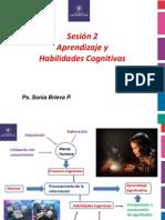 Sesion 2 Habilidades cognitivas y aprendizaje.ppt