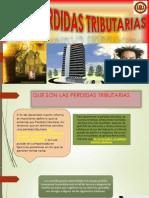 PERDIDAS TRIBUTARIAS  GESTION TRIBUTARIA II.pptx