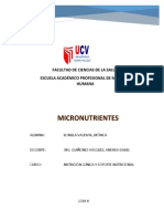 micronutrientes word.docx
