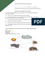 PRUEBA DE CIENCIAS NATURALES 8º AÑO BÁSICO.docx