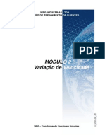 Modulo_2 - Variação de Velocidade.pdf