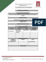 CURRICULUMS ANA DE SANTOS.pdf
