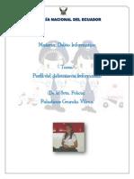 TAREA INDIVIDUAL N°1 DELITOS INFORMATICOS.pdf