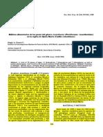 10_Duarte_Acanthurus.pdf