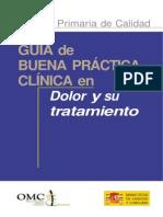 21. guia_dolor_0.docx