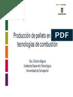 pellets chile.pdf