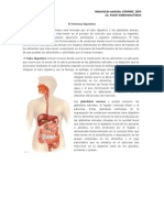 Material de nutrición.docx