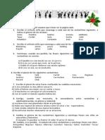 Deberes_navidad