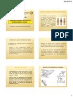 industria-harinera.pdf
