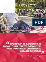 Proyecto Luis Salaya.pdf