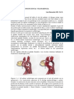 Insuficiencia velofaringea .pdf