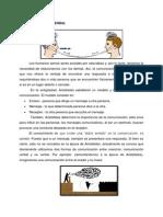 comunicacion verbal y no verbal.docx