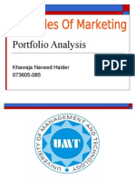 Portfolio Analysis in Principles Of Marketing