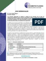 Procesos Gerenciales.pdf