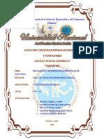 DECLARACION INTERNACIONAL SOBRE PRACTICAS DE AUDITORIA.docx