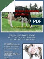 Calculo del peso de animales domésticos.ppt