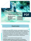gastrulasi sea urchin.pptx