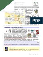 CT_0401_contenidos.docx