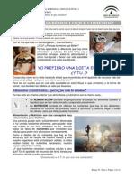 CT_0402_contenidos.docx