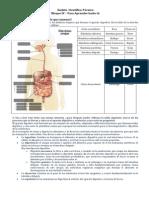 Ámbito  Científico-Técnico - Para Aprender hazlo tú  Bloque IV.docx
