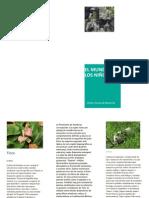 Flora y Fauna de Honduras.docx