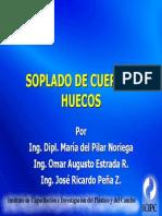 SOPLADO-1.PDF