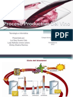 procesoproductivodelvino-120530151327-phpapp01.pptx