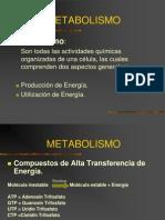 01_metabolismo_biologia.ppt