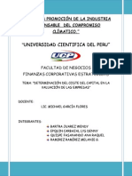 CORPORATIVAS FINANZAS - COSTE DE CAPITAL.docx