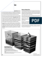 Natural Gas (USA 2012).pdf