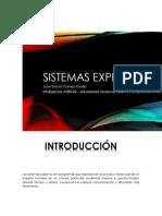 Sistemas_Expertos_JuanDavidGomez.docx