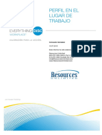 everything-disc-workplace-profile-spanish (1).pdf