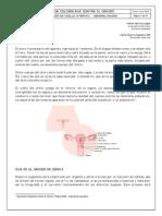 cancer de cervix.pdf