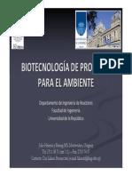 bidigestores.pdf