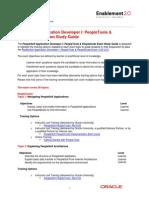 PSFT Developer Guide
