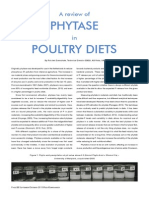 Feed Compounder Layout Phytase in Poultry Diets Sept 2013