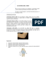 Anatomía del codo.docx