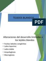 PATOLOGIA DE TEJIDOS BLANDOS.pdf