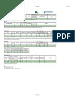 Anexa 2.1 - Detalii Chestionar Client