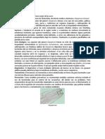 Oxispirurosis.docx
